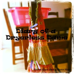 Diary of a Dryerless Dame