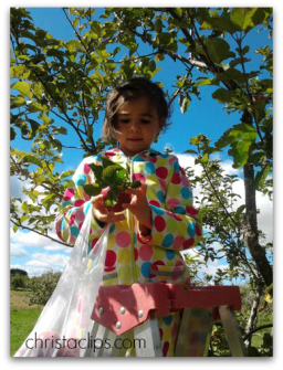 Apple picking each fall is a family favourite for Christa Clips: Save-at-Home-Mom